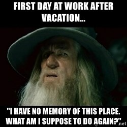 """no memory gandalf - First day at work after vacation... """"I have no memory of this place. What am I suppose to do again?"""""""