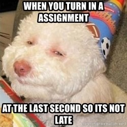 Troll dog - when you turn in a assignment at the last second so its not late