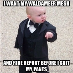 gangster baby - i want my waldameer mesh and ride report before i shit my pants