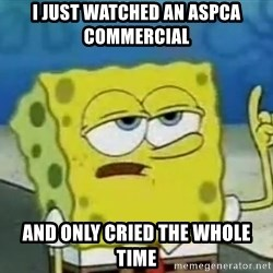 Tough Spongebob - i just watched an aspca commercial and only cried the whole time