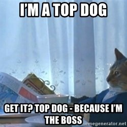 newspaper cat realization - I'm a top dog Get it? Top dog - because I'm the boss