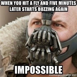 Bane - when you hit a fly and five minutes later starts buzzing again Impossible