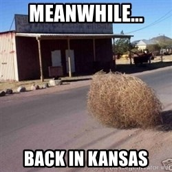 Tumbleweed - MEANWHILE... BACK IN KANSAS