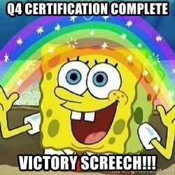 Imagination - q4 certification complete victory screech!!!