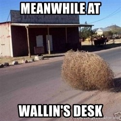 Tumbleweed - Meanwhile at Wallin's Desk