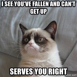Grumpy cat good - i see you've fallen and can't get up serves you right