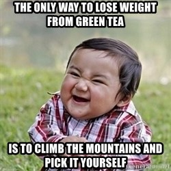 Niño Malvado - Evil Toddler - The only way to lose weight from Green Tea is to climb the mountains and  pick it yourself