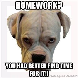 stahp guise - Homework? You had BETTER find time for it!!