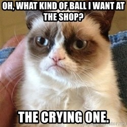 Grumpy Face Cat - Oh, what kind of ball i want at the shop? the crying one.