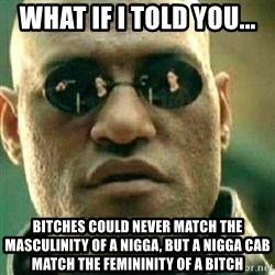 What If I Told You - What if I told you... Bitches could never match the masculinity of a nigga, but a nigga cab match the femininity of a bitch