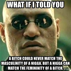 What If I Told You - What if I told you A bitch could never match the masculinity of a nigga, but a nigga can match the femininity of a bitch.
