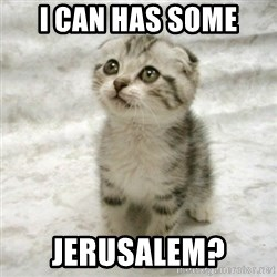 Can haz cat - i can has some jerusalem?