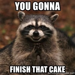 evil raccoon - YOU GONNA FINISH THAT CAKE