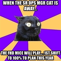 Anxiety Cat - When the SR OPS Mgr Cat is away... THE FHD Mice will play... .1st shift to 100% to plan this year