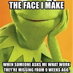 Kermit the frog - The face I make  when someone asks me what work they're missing from 9 weeks ago.