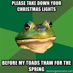 Foul Bachelor Frog - Please take down your Christmas lights before my toads thaw for the Spring