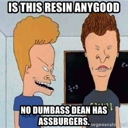 Beavis and butthead - is this resin anygood no dumbass Dean has Assburgers.