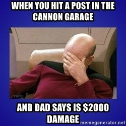 Picard facepalm  - When you hit a post in the Cannon Garage  And dad says is $2000 damage