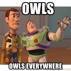 Toy story - Owls  Owls everywhere