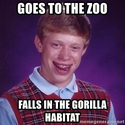 Bad Luck Brian - goes to the zoo falls in the gorilla habitat