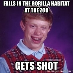 Bad Luck Brian - falls in the gorilla habitat at the zoo gets shot