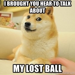 so doge - i brought you hear to talk about my lost ball