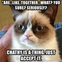 """Grumpy Cat  - """"Are...like..together...what? You sure? Seriously? Chathy is a thing. Just accept it."""