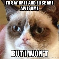 Angry Cat Meme - I'd say Bree and Elise are awesome But I won't