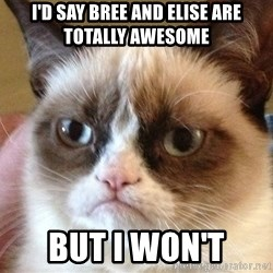 Angry Cat Meme - I'd say Bree and Elise are totally awesome But I won't