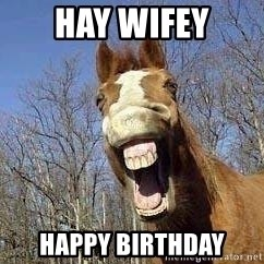 Horse - Hay wifey Happy birthday