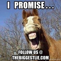 Horse - I   Promise . . . Follow us @ thebiggestlie.com