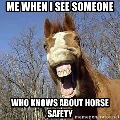 Horse - me when i see someone  who knows about horse safety