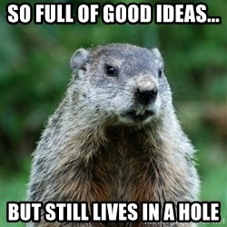 grumpy groundhog - So full of good ideas... But still lives in a hole