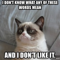 Grumpy cat good - I don't know what any of these words mean  and I don't like it.