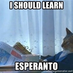 Sophisticated Cat - I should learn  Esperanto