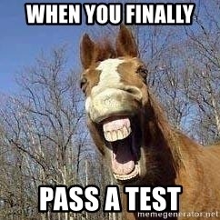 Horse - When you finally  Pass a test