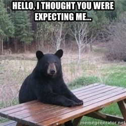 Patient Bear - Hello, I thought you were expecting me...