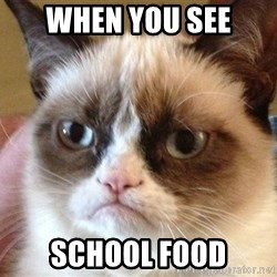 Angry Cat Meme - when you see school food