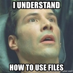 i know kung fu - I understand how to use files
