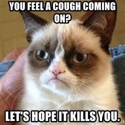 Grumpy Cat  - You feel a cough coming on? Let's hope it kills you.