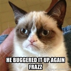Grumpy Cat  - he buggered it up again frazz
