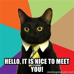 Business Cat - hello, it is nice to meet you!
