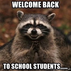 evil raccoon - welcome back to school students......