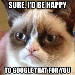 Angry Cat Meme - Sure, I'd be Happy To Google that for you