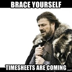 Winter is Coming - BRACE YOURSELF TIMESHEETS ARE COMING