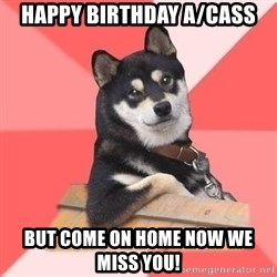 Cool Dog - Happy Birthday A/Cass But come on home now we miss you!