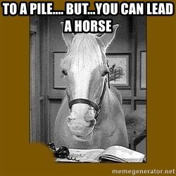 Mr. Ed 2.0 - To A Pile.... But...You Can Lead A Horse