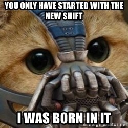 bane cat - You only have started with the new shift I was born in it