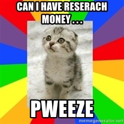 Cute Kitten - Can I have reserach money . . .  Pweeze