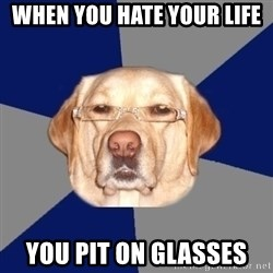 Racist Dog - when you hate your life  you pit on glasses